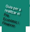Guía para realizar el Plan Económico y Financiero