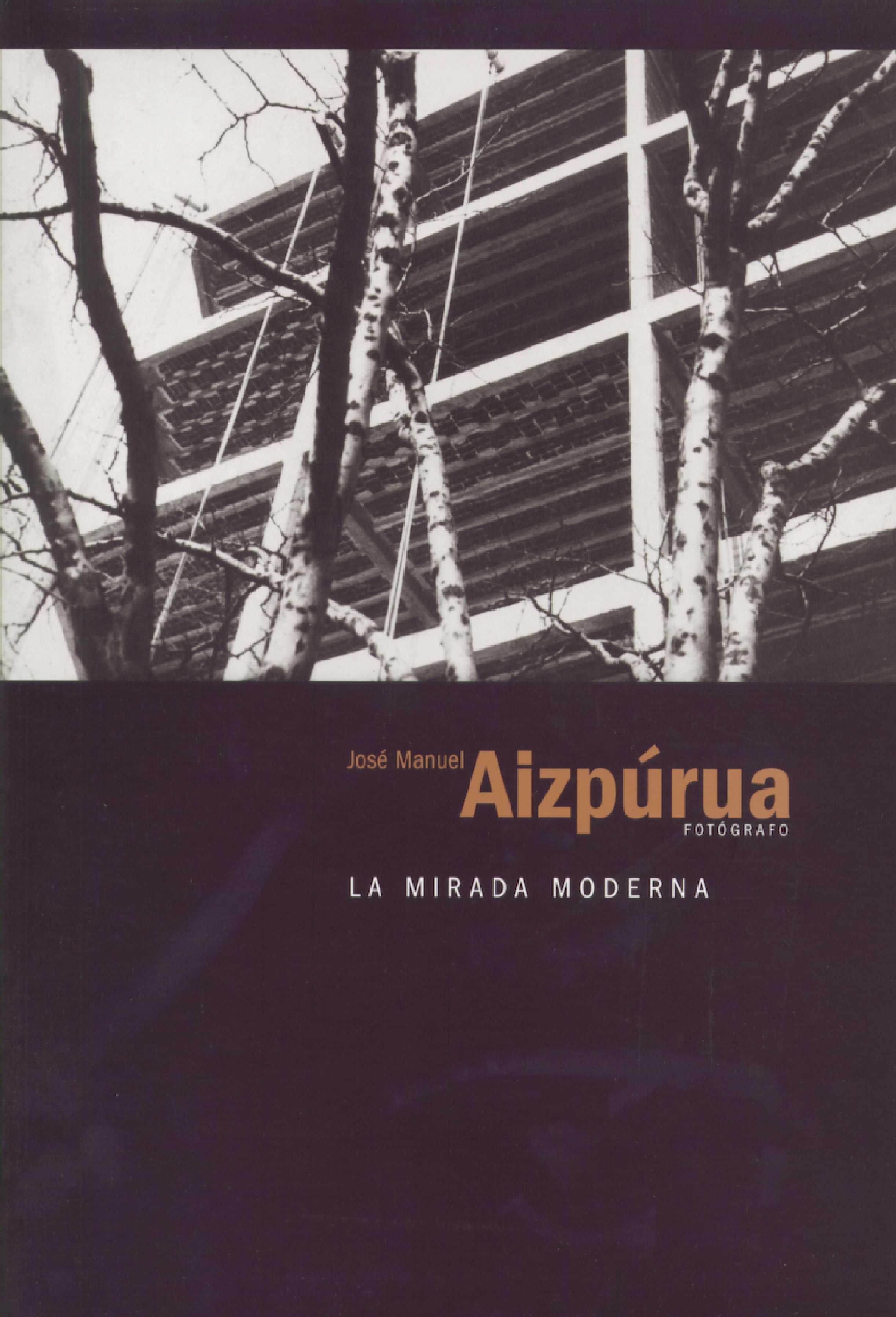 JOSÉ MANUEL AIZPÚRUA. LA MIRADA MODERNA