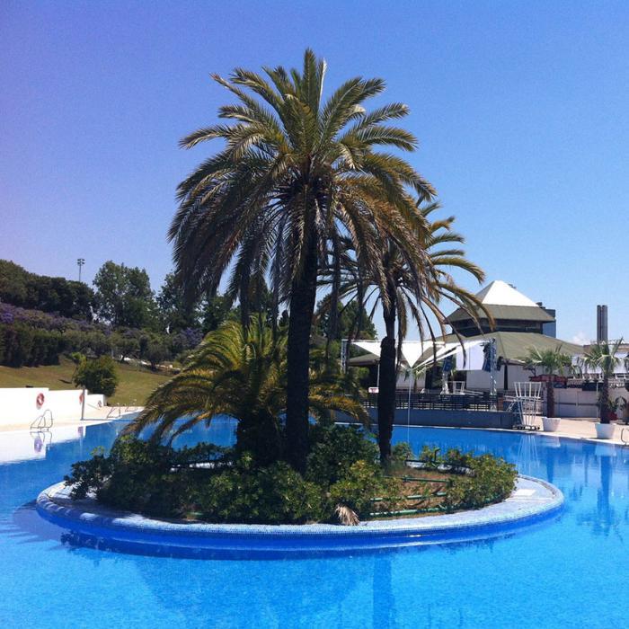 Imagen de la piscina exterior